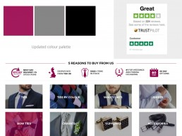 website details and colour palette